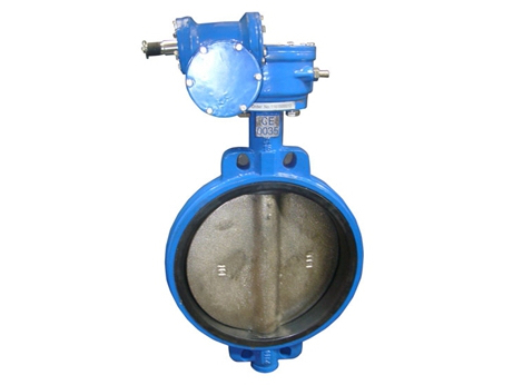 Wafer Extended bonnet butterfly valve with pin