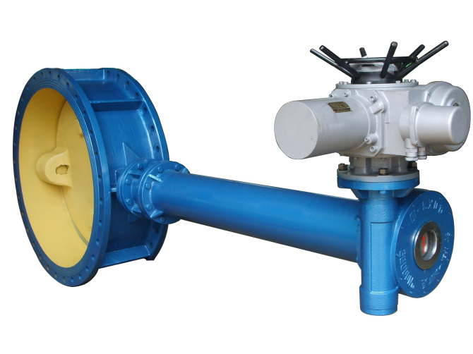 Double offset double flanged butterfly valves with extended stem