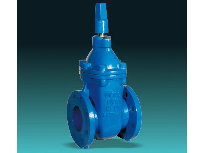 BS 5163 Type B metal seated gate valves