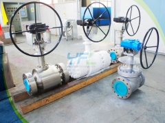 Cryogenic extended stem top entry ball valves