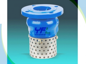 Ductile Cast Iron Foot Valve