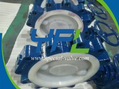 Lugged FEP Lined butterfly valve